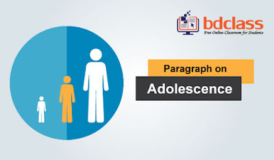 paragraph on adolescence
