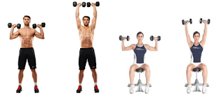 Program Latihan Fitnes shoulder press