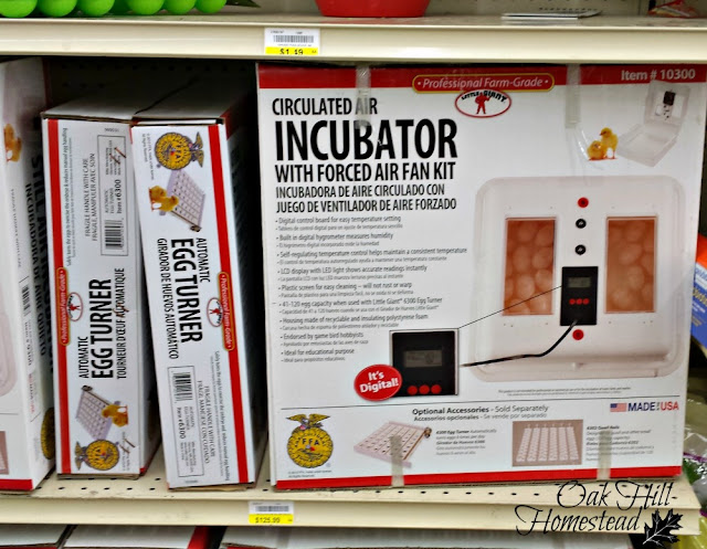 store display of incubators