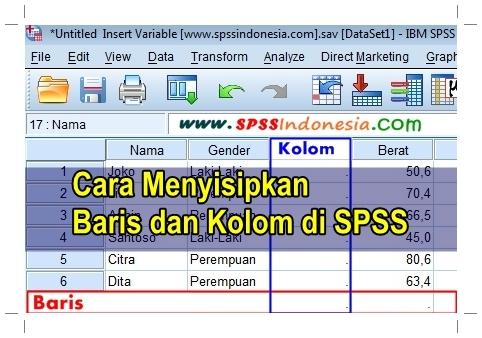 Cara Menambahkan Menyisipkan Baris dan Kolom Baru di SPSS Lengkap