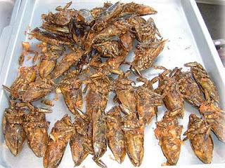 11 Makanan Yang Berbahan Utama Serangga
