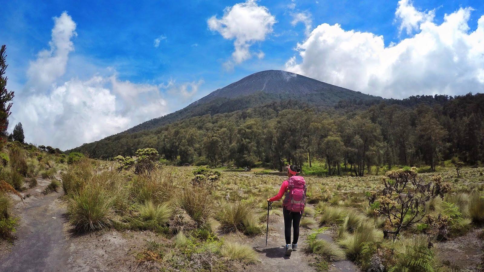 Gunung Semeru indah bentang alam