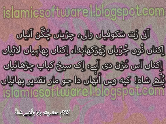 baba bulleh shah quotes 2