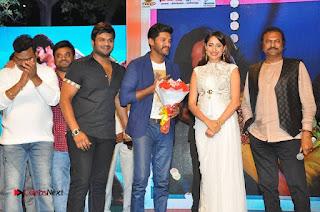 turodu Telugu Movie Audio Launch Stills  0020.jpg
