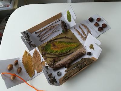 juegos con objetos de otoño