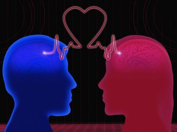 كيف يكون الدماغ في حالة الحب