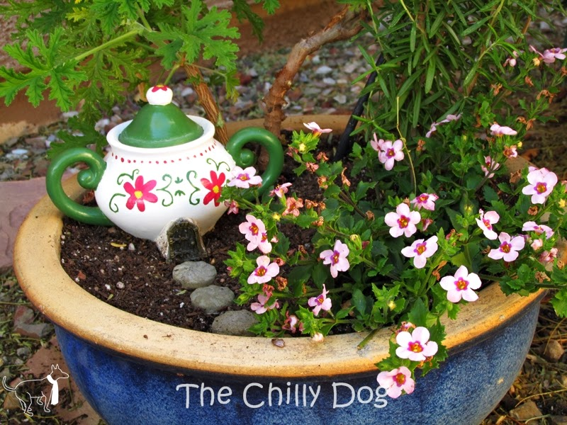 Container Garden: Create a magical fairy garden with a teapot house and some pixie dust