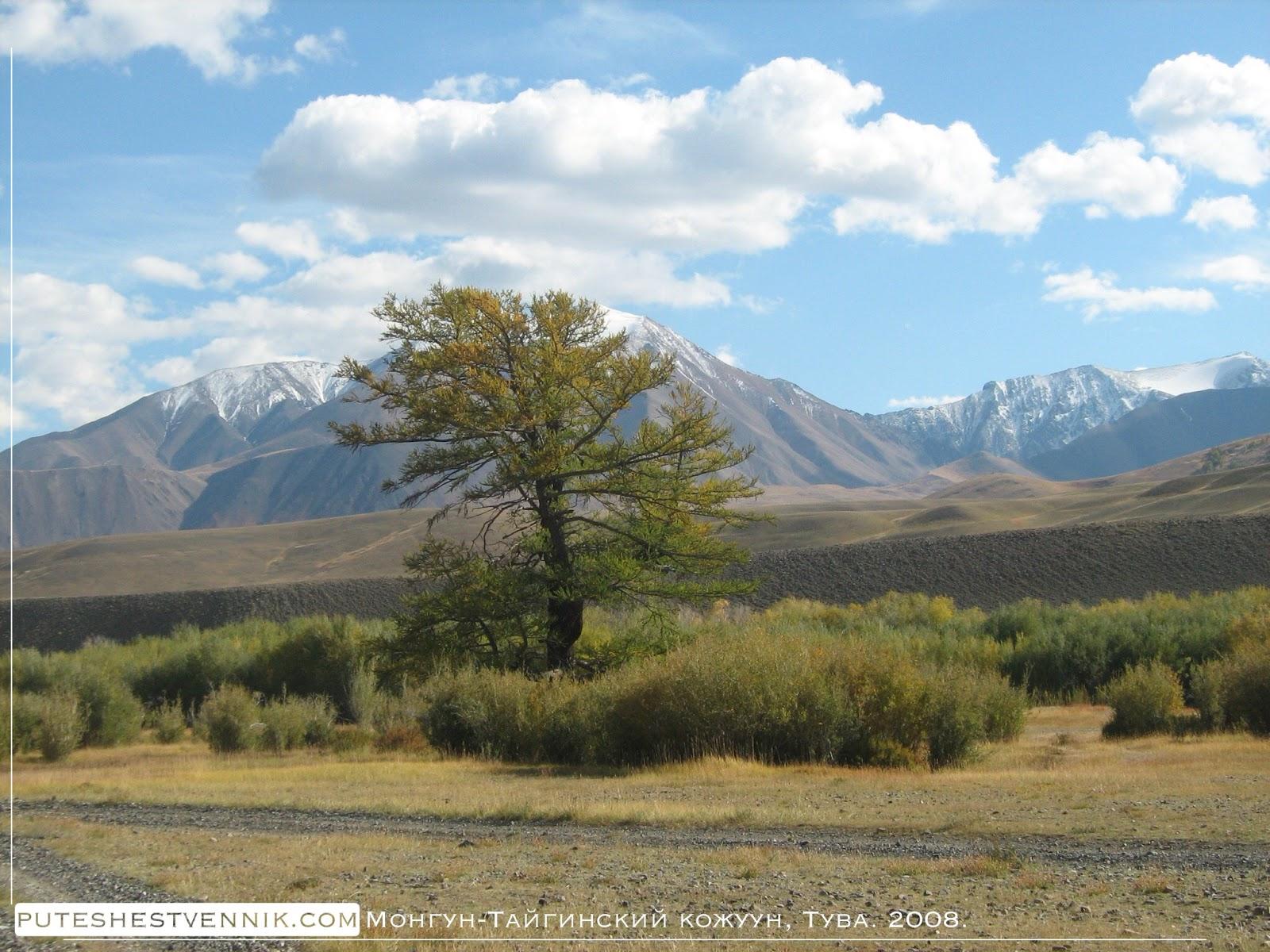 Горы и лиственница
