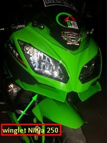 Winglet Kawasaki Ninja 250
