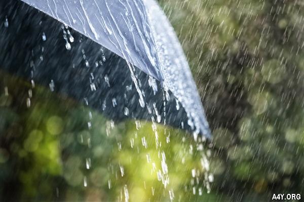 mưa buồn tháng 6