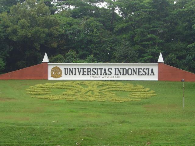 Jumlah Fakultas Terbanyak di UI Sebagai International University