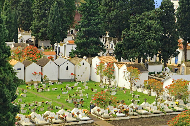 Buy wallart of St Martins Cemetary Funchal