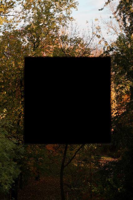 Jesienna kompozycja z czarnym kwadratem. Fotografia abstrakcyjna. Fotografia koncepcyjna. fot. Łukasz Cyrus