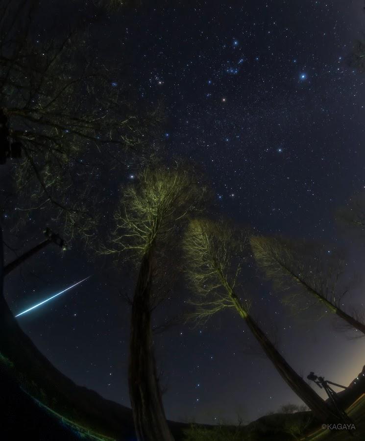 Một fireball* (lưu tinh) vụt qua bầu trời, ở ngay bên cạnh đó bạn có thể thấy được 7 ngôi sao có hình dạng như một chiếc gàu múc nước, đó là nhóm sao Bắc Đẩu thuộc chòm sao Ursa Major, chú gấu lớn. Hình ảnh: Kagaya Yutaka.