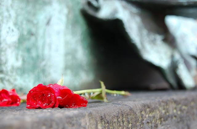 Maria Montessori Would Turn Over In Her Grave! {Confessions of a Montessori Mom}