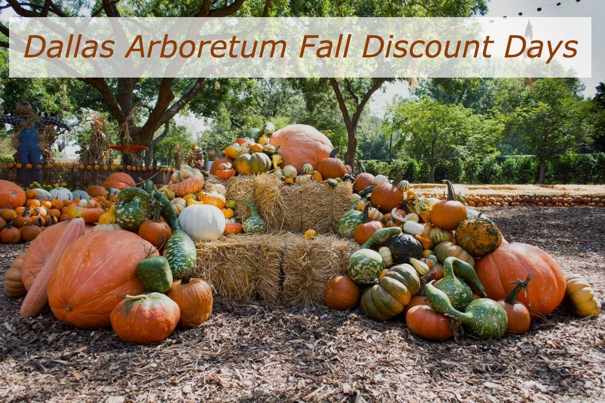Save 38% off admission to the best Dallas attractions with Dallas CityPASS®. Plus, skip most tickets lines. Learn more here. Dallas Enjoy breathtaking views and vibrant color any day of the year at the Dallas Arboretum and Botanical Gardens. don't miss the coupons in the back of your CityPASS booklet for great savings on things like /5().