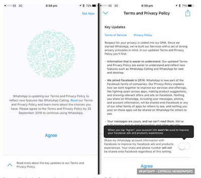 Whatsapp Terms And Conditions