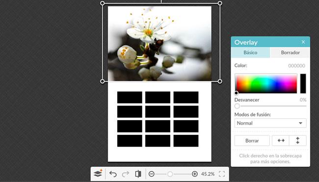 ejemplo-plantilla-base-imagen