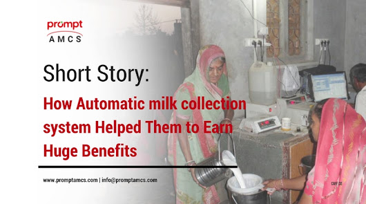 Short Story: How Automatic milk collection system Helped Them to Earn Huge Benefits