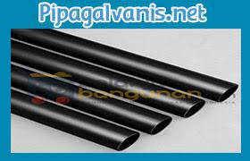 Jenis Pipa Hitam pipagalvanis.net