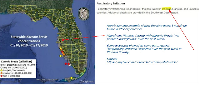 Why any beach in Florida might have red tide algae at any time