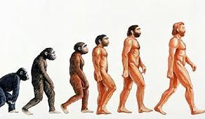 Resultado de imagen de pruebas evolutivas