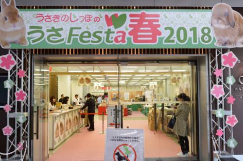 うさフェスタ 2019 春は4月13日、14日に横浜貿易ホールで開催!