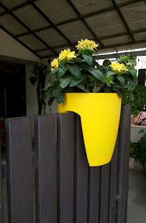yellow railing planter pots