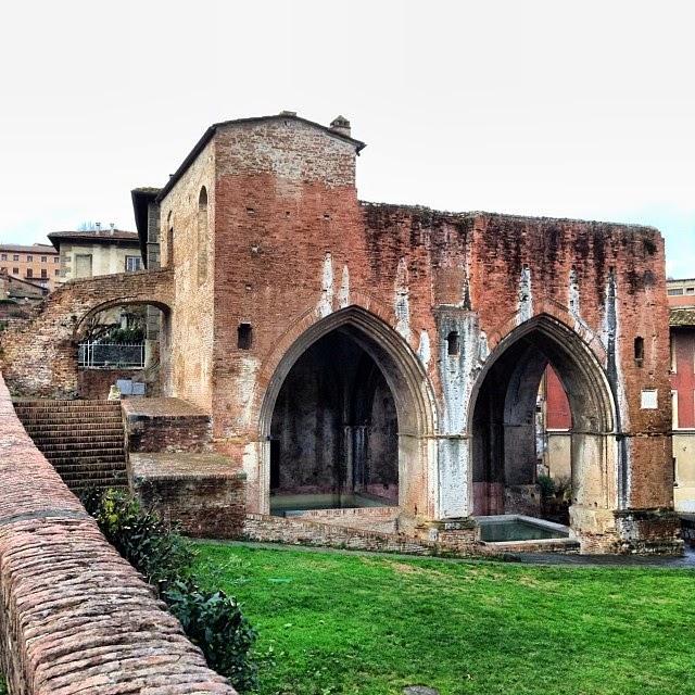Siena: Fontenuova