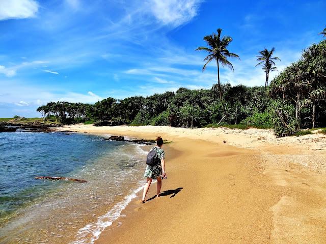 Sri Lanka: plan podróży i zwiedzania na 16 dni - informacje praktyczne, szczegóły, co zobaczyć, co można sobie darować, gotowa trasa na własną rękę.  Negombo Dambulla Sigiriya Safari Sri Lanka Kandy pociąg Kandy - Ella Ella Nuwara Eliya Tangalla Tangalle Beach Matara Mirissa Galle Unawatuna Kolombo Colombo