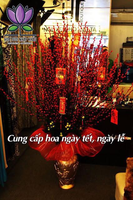 Hoa hong Ohara tim B4880 B400