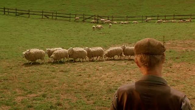 Μπέιμπ, το Γουρουνάκι (1995)