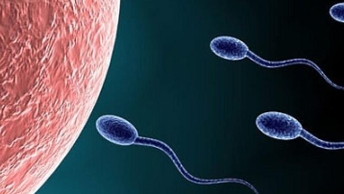 Andrologi, cinque regole salva-fertilità per i ragazzi