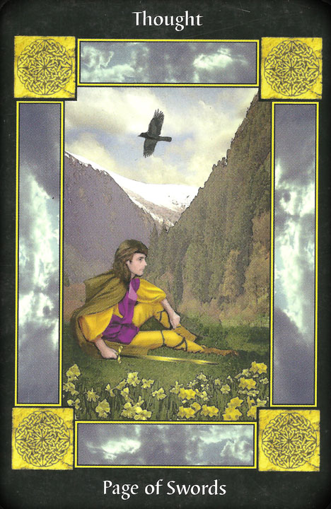 The Page of Swords. Image from Celtic Tarot Cards, Meaning from Nature: symbols of the ancient Celts http://www.dnfrost.com/2017/03/celtic-tarot-cards-meaning-from-nature.html An inspired contribution by D.N.Frost @DNFrost13 Part 4 of a series.