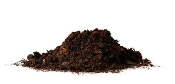 Mr bokelmann 39 s science class soil webquest for Science dirt