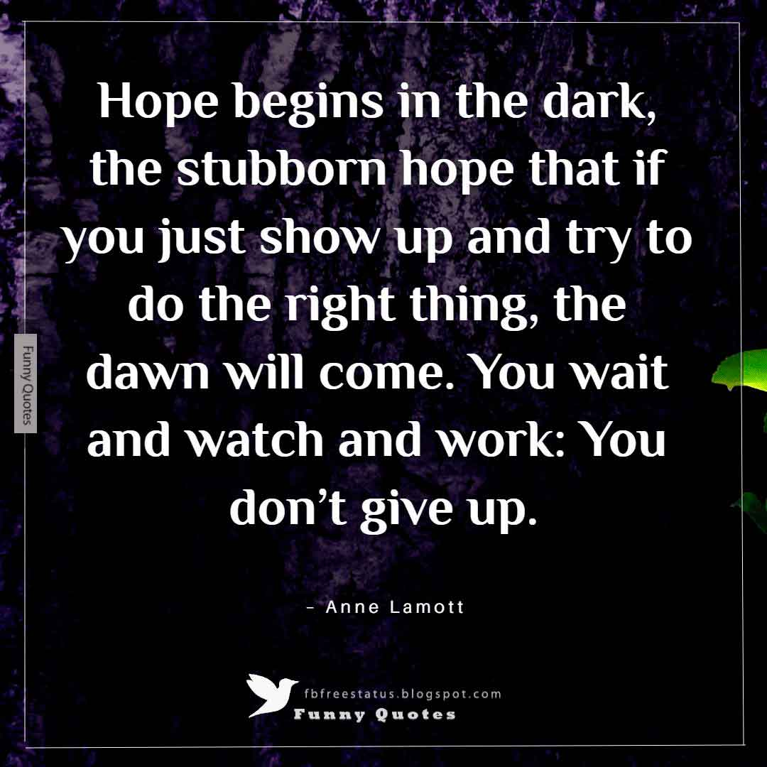 """Hope begins in the dark, the stubborn hope that if you just show up and try to do the right thing, the dawn will come. You wait and watch and work: You don't give up."" ~Anne Lamott"