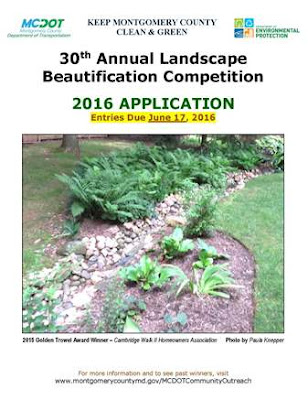 2016 Landscape Competition