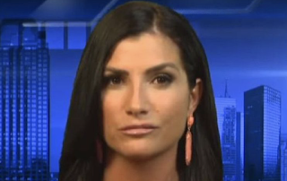 NRA spokeswoman Loesch hits back at Democratic lawmaker's 'security threat' claim