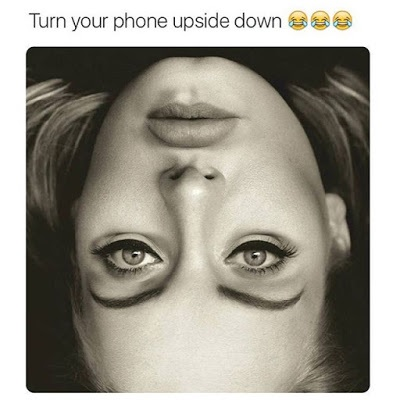 Turn Your Phone Upside Down & Look at this Photo