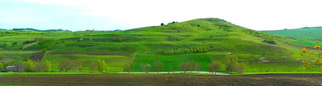 prelepa-slika-prirode-zelenila