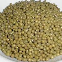 Cara Praktis Merebus Kacang Hijau Agar Tidak  Merusak Nutrisinya Hemat Bahan  Bakar Cepat Lunak