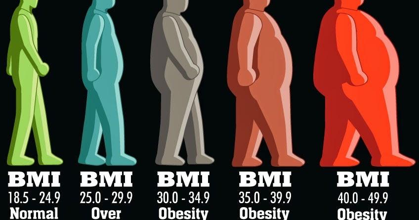 bmr și pierderea în greutate au explicat