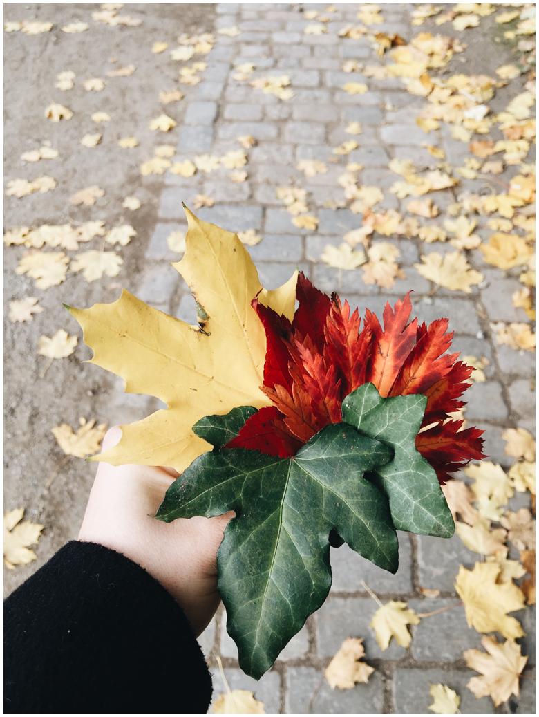 autumn, herbst