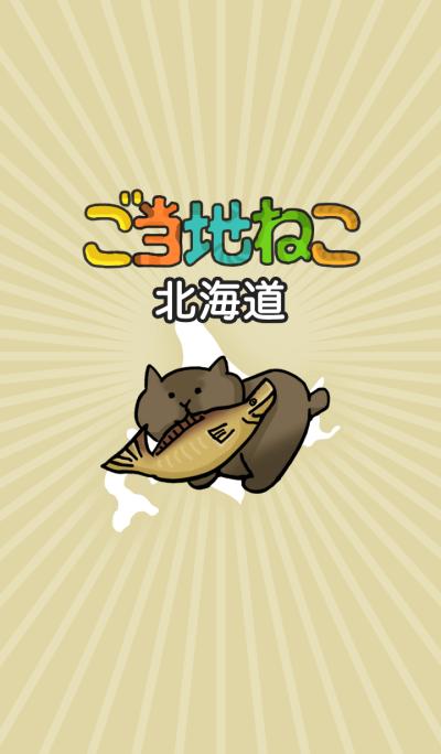 This area cat in Japan Hokkaido