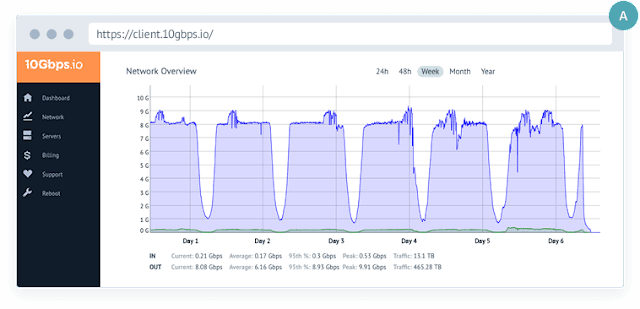 Unshared Dedicated 10Gbps Ports