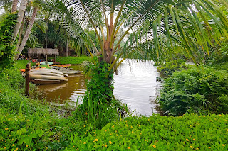 Boats docked at a river cove with lush greenery surrounding the area