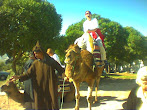 Camel Tour Marrocco