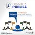 A prefeitura de Pintadas realizará consulta pública sobre estradas vicinais