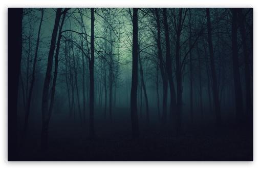 Dark Forest Wallpaper 1080p