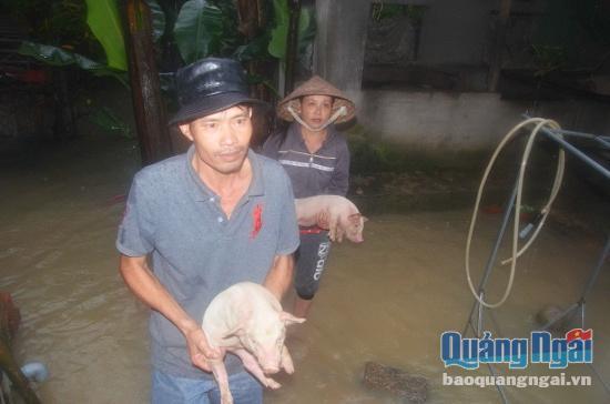 Quảng Ngãi: Mưa lũ đã khiến 7 người dân thiệt mạng